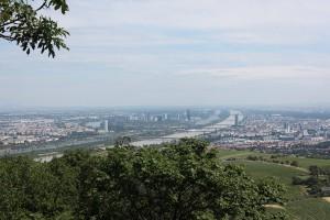 Blick vom Kahelnberg