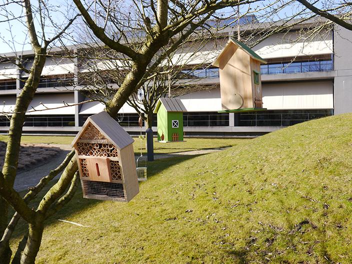 Insektenhotel_Vogelhäuser