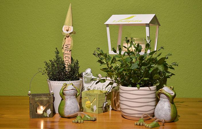 Heilkräuter im eigenen Garten - leckere Hausmittel bei Erkältung oder Blasenentzündung - Ernsting's family Blog