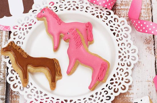 Pferdegeburtstag, Pferdeparty, Mottoparty, Kindergeburtstag